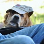 Jake_hat