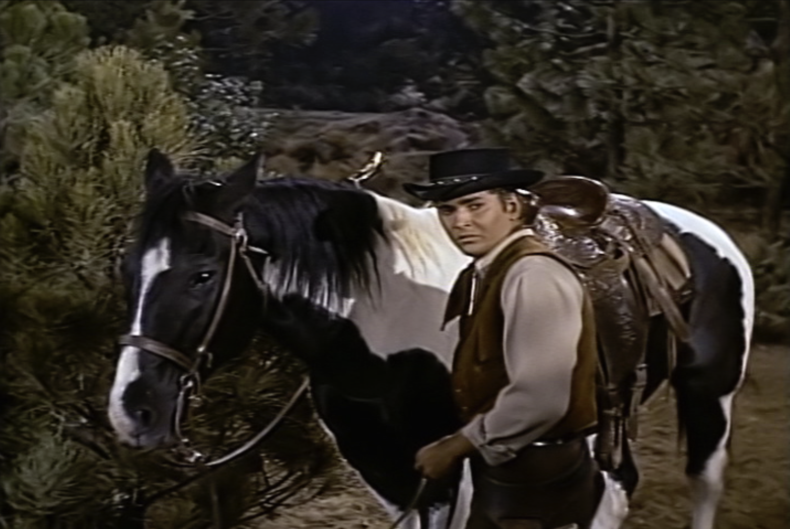 House Tv Series Horses Of Hollywood Insp Tv Family Friendly